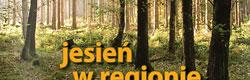 Czadrów i okolice - Publikacja prezentująca krajobrazy leśne regionu